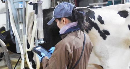 乳牛検定事業